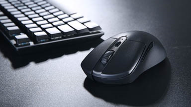 Dareu A918, Wireless Gaming Mouse at Affordable Prices