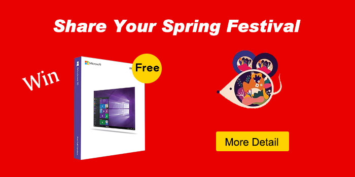 How is your spring Festival?