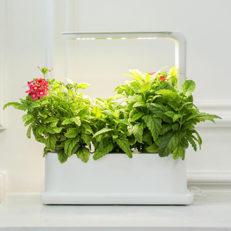 LifeSmart 2021 Newest Farm Smart Hydroponic Micro Garden Organic Vegetable Flower Pot with Led Grow Light