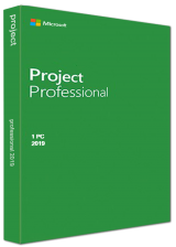 bzfuture.com, Project Professional 2019 Key Global