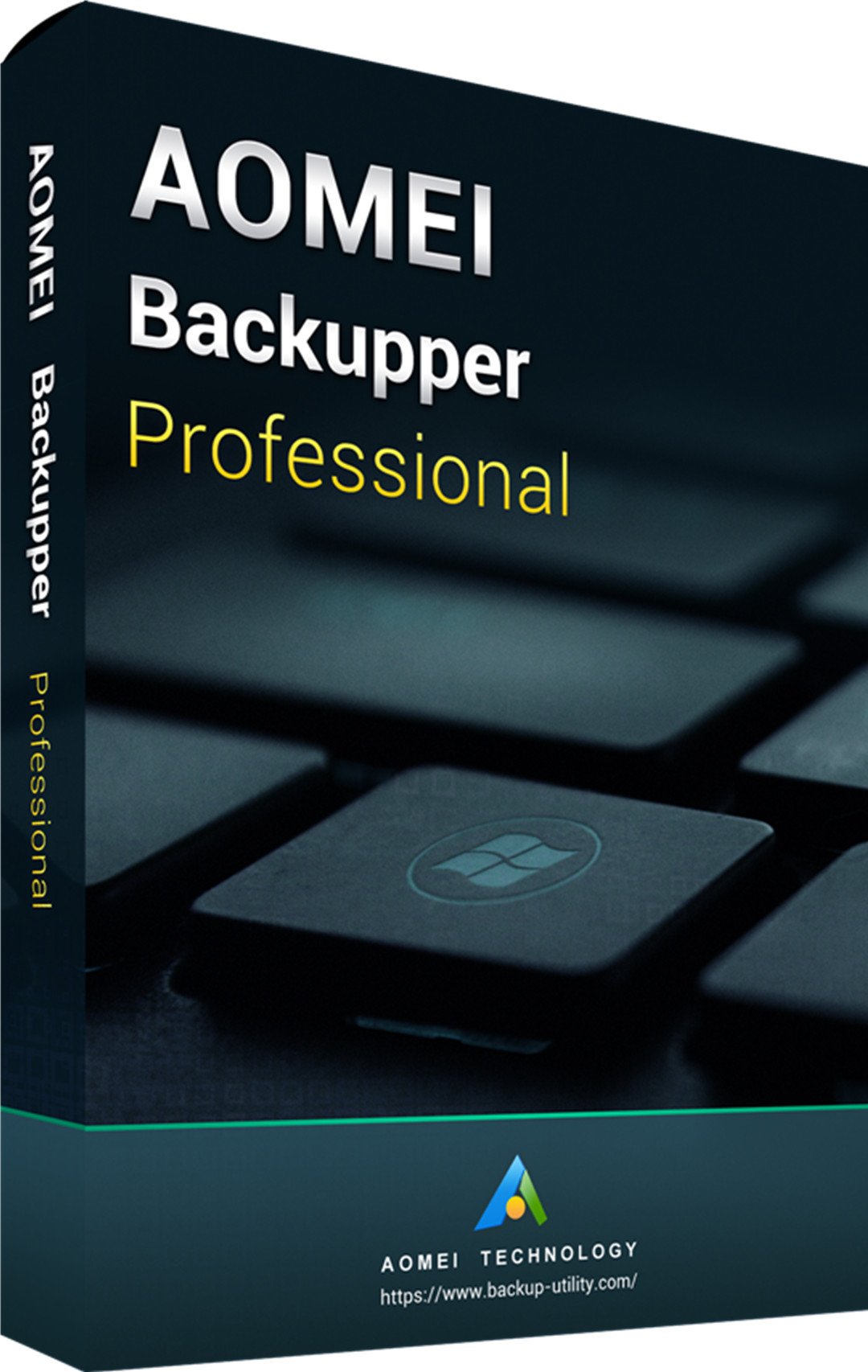 AOMEI Backupper Professional Edition 365 Days 5.0 Key Global