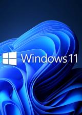 bzfuture.com, Microsoft Windows 11 Pro OEM CD-KEY GLOBAL