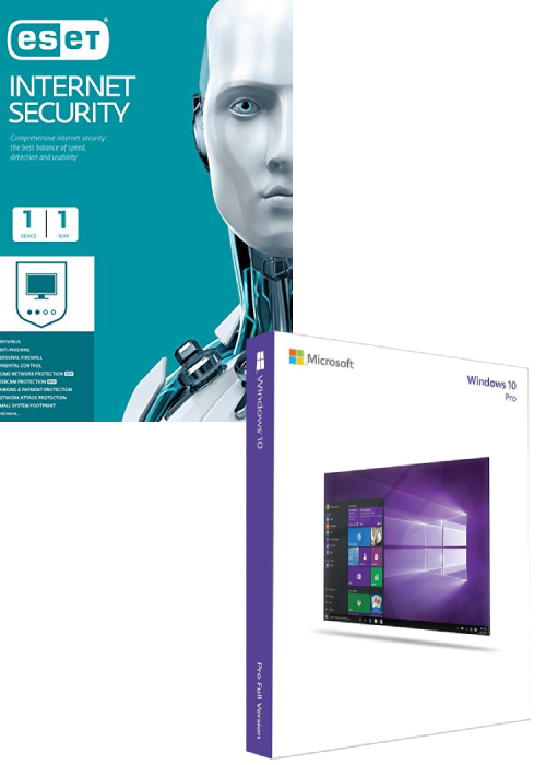 ESET Internet Security 1 Device 1 Year + Windows 10 Pro OEM CD Key Pack